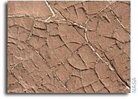 Curiosity Examines Possible Mud Cracks on Mars