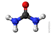 The Formation of Urea in Space