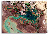 Earth from Space: Musa Bay, Iran