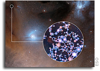ALMA Finds Methyl Isocyanate Around Infant Sun-like Stars
