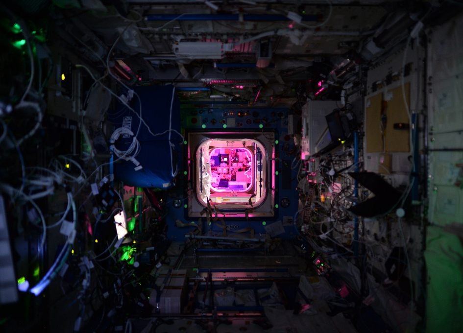 Space Station at Night - Lit By A Greenhouse