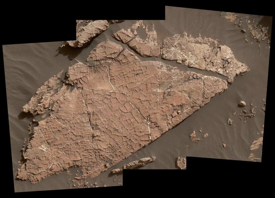 Curiosity Examines Possible Mud Cracks on Mars
