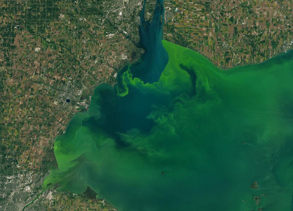 Orbital View Of Algal Blooms In Lake Erie