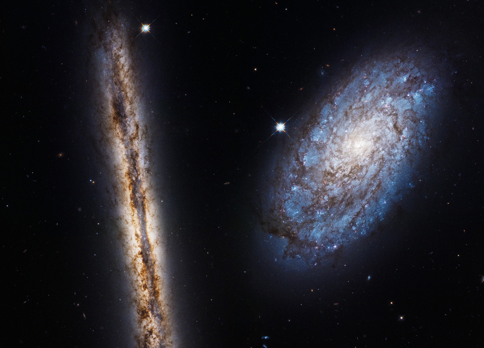 hubble looks at nothing - photo #11