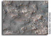 Exposed Bedrock in the Koval'sky Impact Basin on Mars