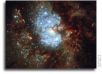 IC 342: Hubble's Hidden Galaxy