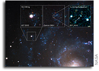 Stellar Thief is The Surviving Companion to a Supernova