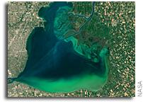 Landsat 8 Marks Five Years in Orbit
