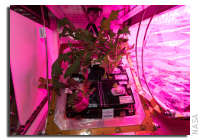 NASA Space Station On-Orbit Status 12 March 2018 - Continued Work With Veggie-03