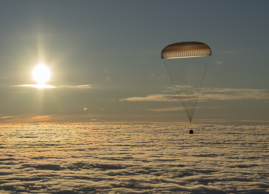Returning To Earth At Dawn
